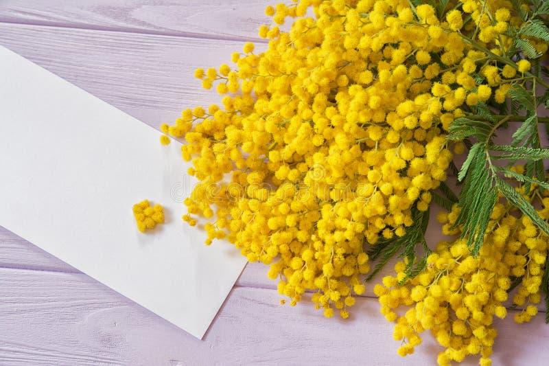 Piękne mimozy kwitną gałązki serce na świetle i okwitnięcie - różowy drewniany tło Płytka głębia 8 karciany eps kartoteki powitan zdjęcie royalty free