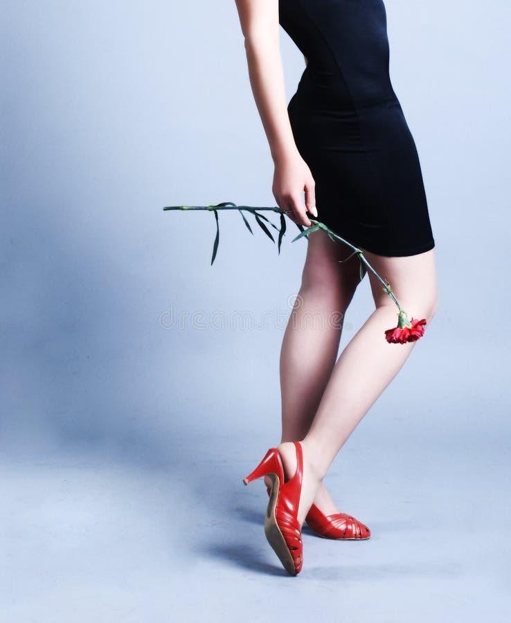 piękne nogi kobiety zdjęcia royalty free