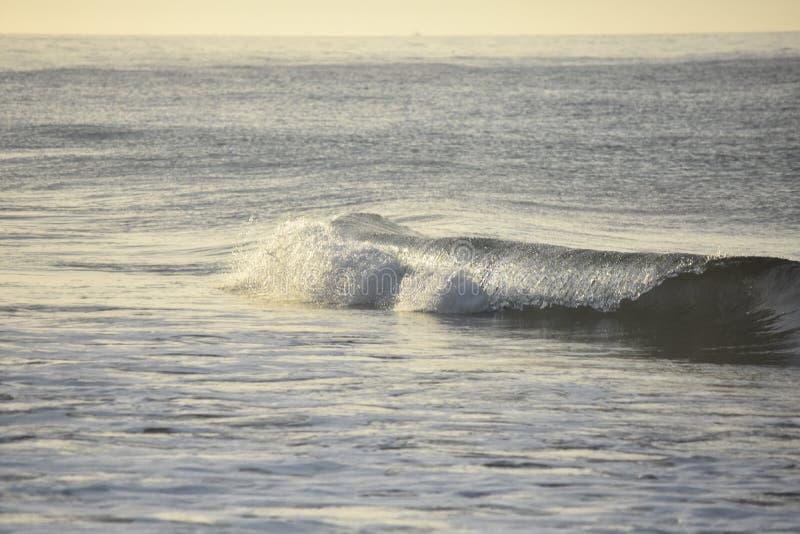 Piękne ocean fala tworzy z zachodniego wybrzeża obrazy stock