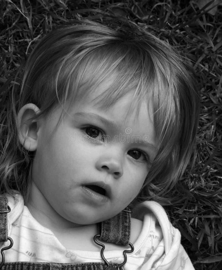 piękne oczy niewinnego zdjęcia stock