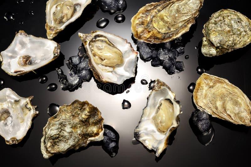 Piękne ostrygi od francuskich brzeg fotografia royalty free