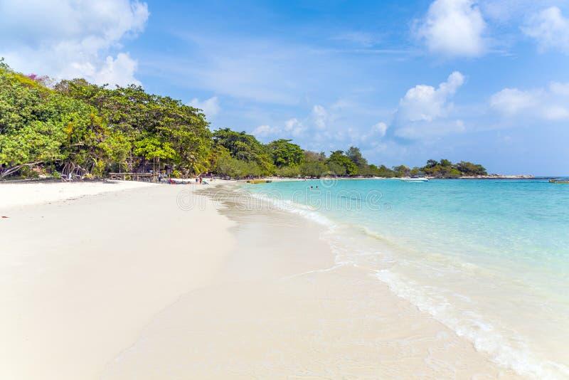 piękne plażowych pierwszoplanowych palm lagun tropikalny turkus fotografia stock