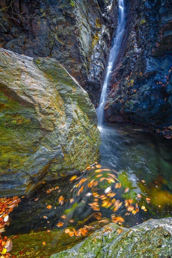 Piękne przesłoien siklawy, mechate skały, wiruje opuszczają obrazy stock
