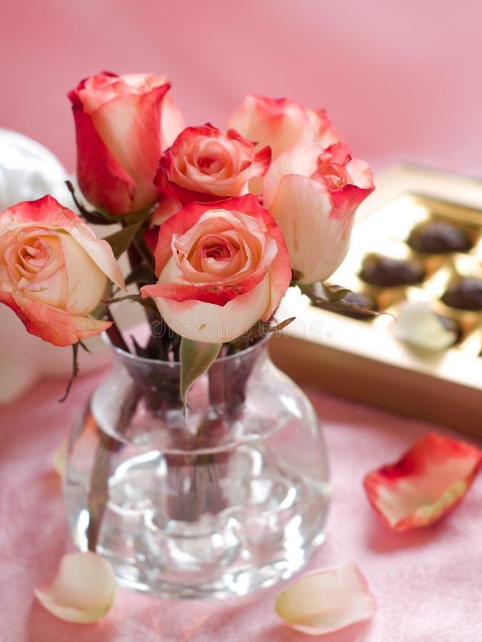 Piękne róże obrazy stock