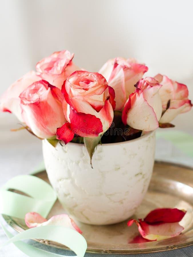 Piękne róże zdjęcie stock