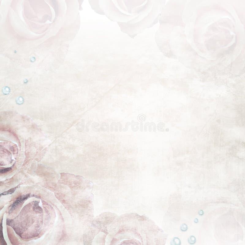Piękne róże poślubia tło obrazy stock