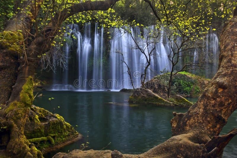 Piękne siklawy obramiać w drzewach nad szmaragd wodą w głębokim - zielony las w Kursunlu Naturalnym parku, Antalya fotografia stock