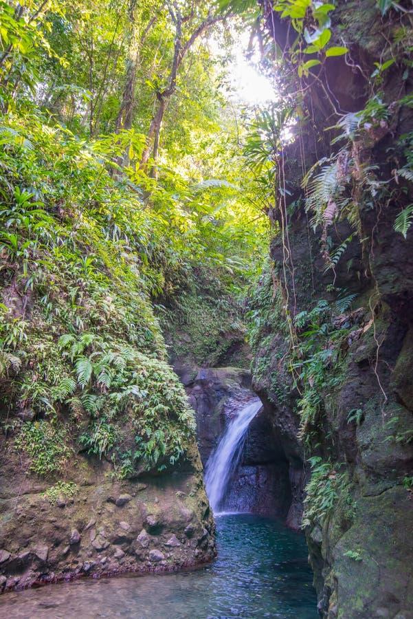 Piękne siklawy w Dominica - brać przed Huraganową Maria szkodą obraz stock