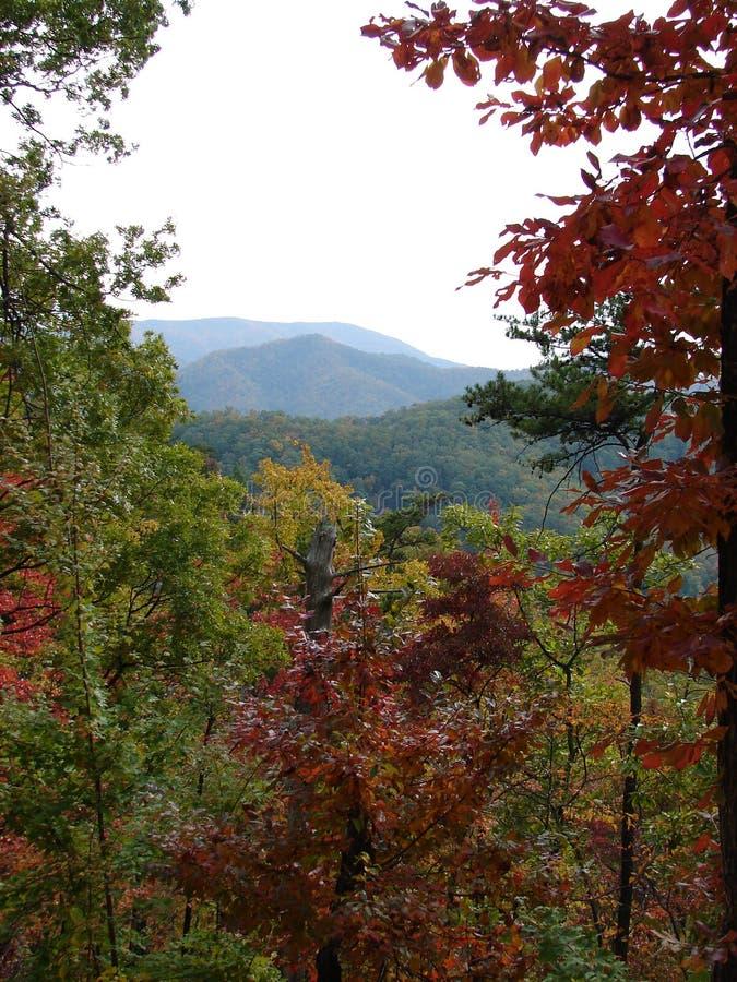 Piękne Smokey góry w spadku fotografia stock