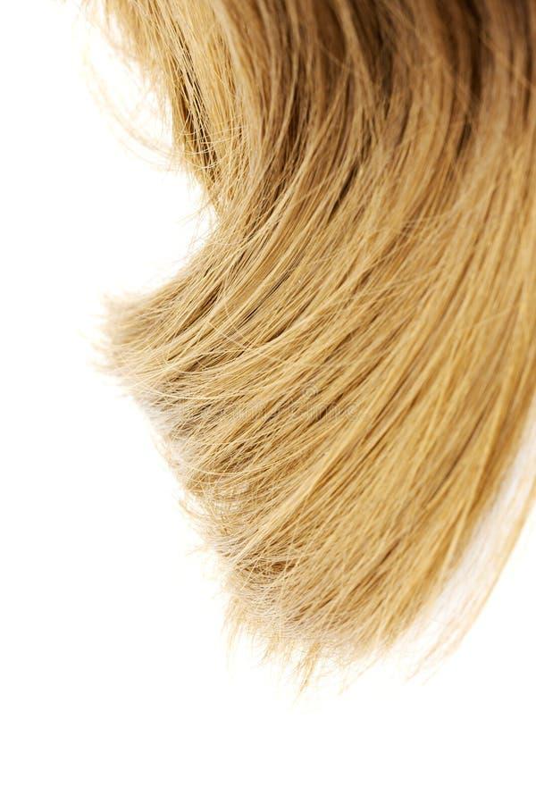 piękne włosy płowe zamek obrazy royalty free
