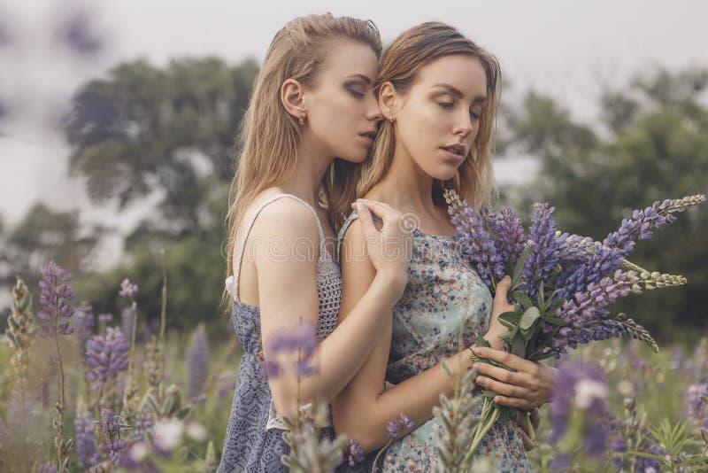 Pięknego brunetka napadu schudnięcia krucha dwa kobiety z jasnymi flawles zdjęcie royalty free
