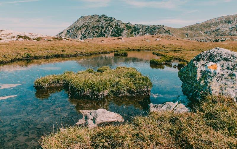 Pięknego góra krajobrazu zimny jezioro w obywatela Retezat parku Rumunia zdjęcia stock