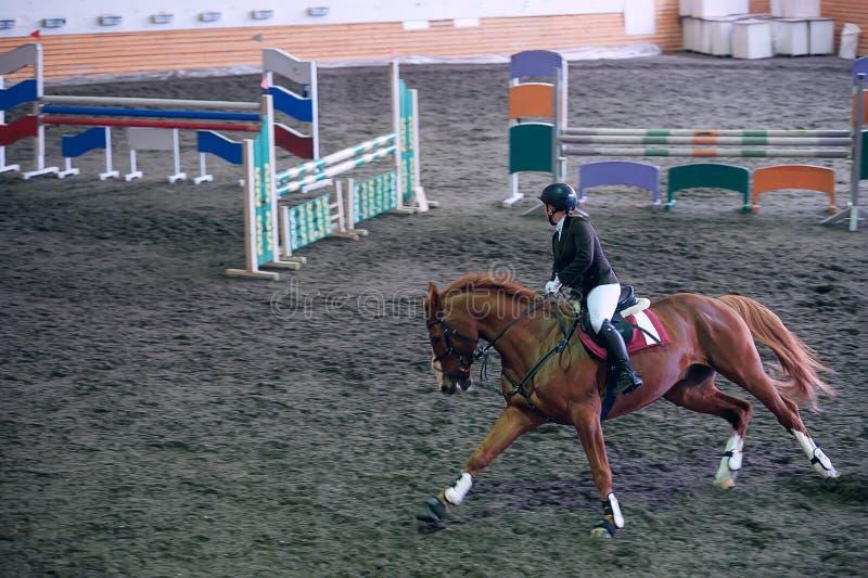Pięknego młoda dziewczyna dżokeja jeździecki koń gotowa wziąć siłą obrazy royalty free