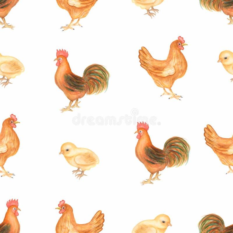 Pięknej akwareli bezszwowy wzór z zwierzętami gospodarskimi Kurczaka, karmazynki i koguta rolni ptaki, r?ka patroszona ilustracja wektor