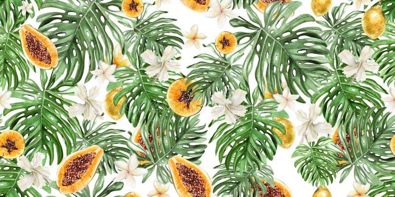 Pięknej akwareli tropikalny wzór z kwiatami, owoc melonowiec i cytryną, obraz royalty free