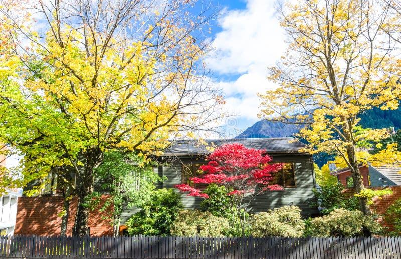 Pięknej jesieni sceniczny widok w Nowa Zelandia obrazy royalty free