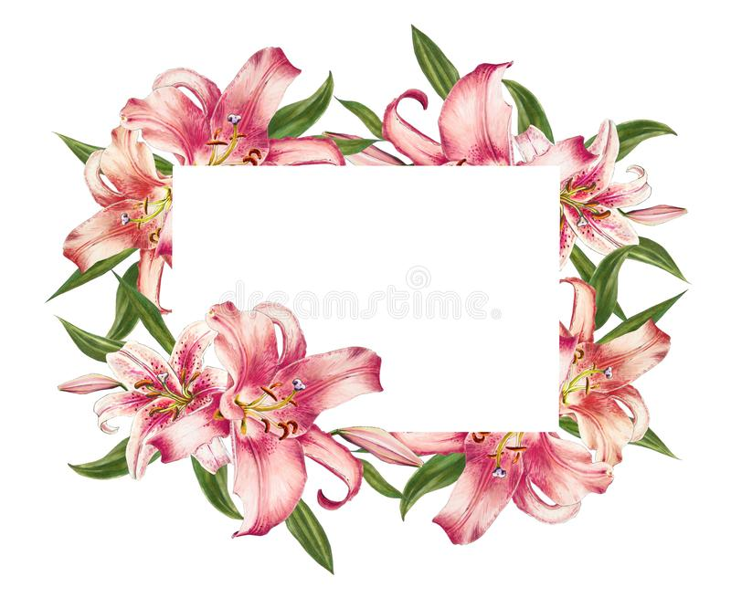 Pięknej różowej lelui fotografii kwiecista rama Bukiet kwiaty Kwiecisty druk Markiera rysunek ilustracja wektor