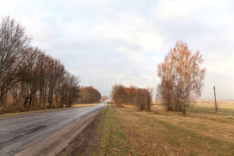 Pięknej wsi pusta droga, brzozy drzewa las, chmurny pogoda krajobraz zdjęcie stock