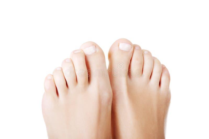 Piękni żeńscy cieki - zamyka up na palec u nogi obraz stock