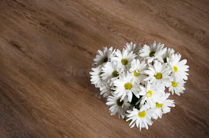Piękni biali kwiaty chryzantema na drewnianym tle fotografia royalty free