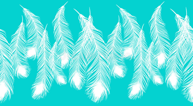 Piękni biali pawi piórka na błękitnym tle ilustracja wektor