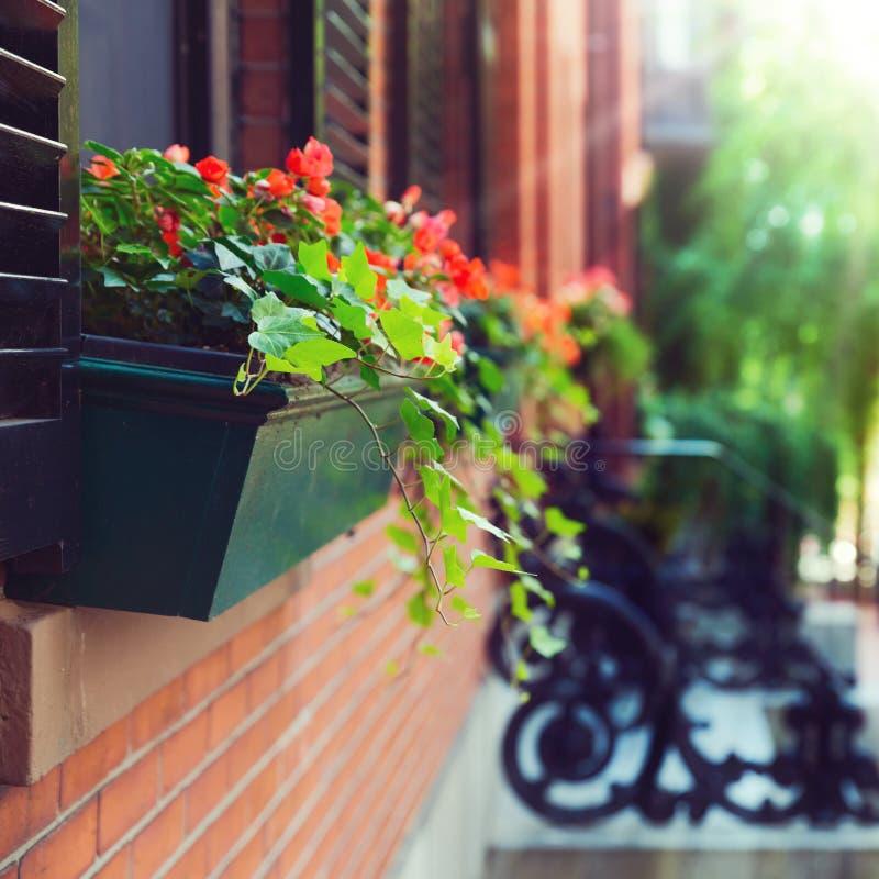 Piękni domy w Boston, Massachusetts, usa fotografia royalty free