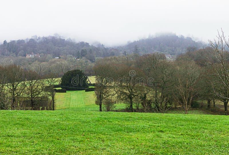 Piękni drzewa i pole z mgły mgłą fotografia royalty free