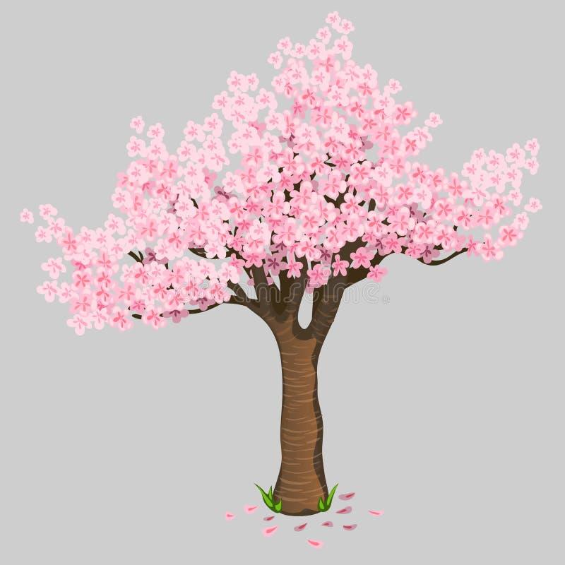 Piękni drzewni czereśniowi okwitnięcia Delikatny Sakura ilustracji