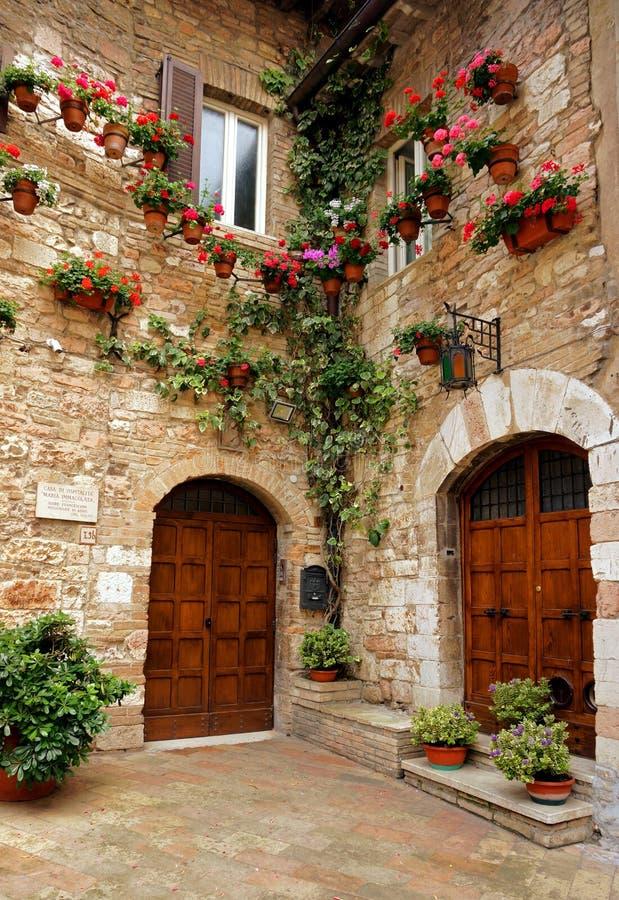 Piękni drzwi obraz royalty free