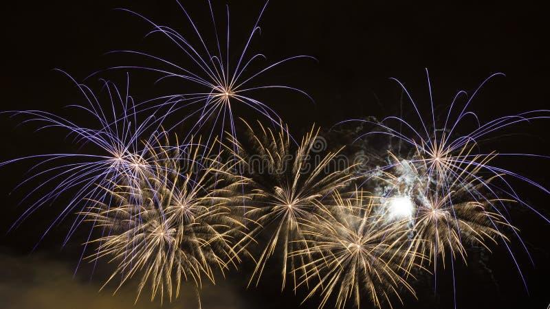 Piękni fajerwerki Na nocnym niebie zdjęcie royalty free