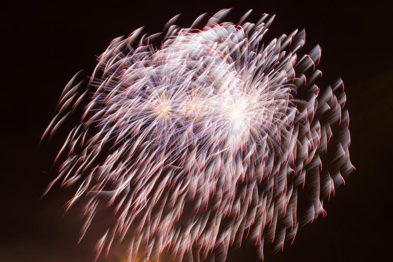 Piękni fajerwerki Na nocnym niebie fotografia royalty free