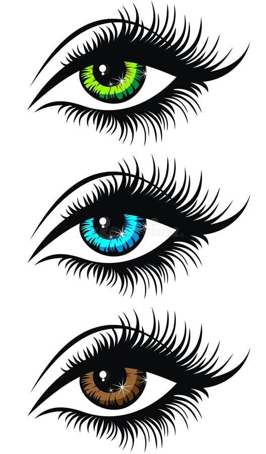 Piękni kobiet oczy. Zieleni, błękita i Brown kobiety piękny e, ilustracji