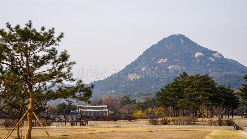 Piękni krajobrazów obrazki Przy Gyeongbok pałac Seul, korea południowa obraz stock