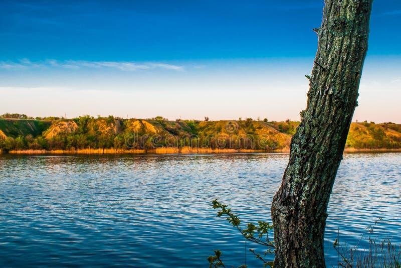 Piękni krajobrazy Rosja Rostov region Kolorowi miejsca Zielona roślinność i rzeki z jeziorami i bagnami Lasy i mea obrazy stock