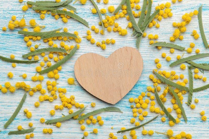 Piękni kwiaty żółta mimoza i drewniany serce na błękitnym drewnianym stole Odgórny widok obraz stock