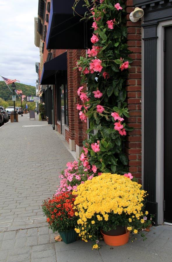 Piękni kwiaty wykłada brukowiec ulicy, w centrum Nowy Milford, Ct, 2015 obraz royalty free