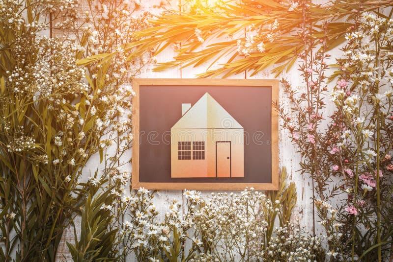 Piękni menchii i białych kwiaty z zieloną liścia drzewa ramą z obraz stock