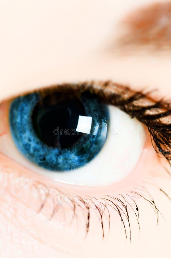 piękni niebieskie oczy zdjęcie stock