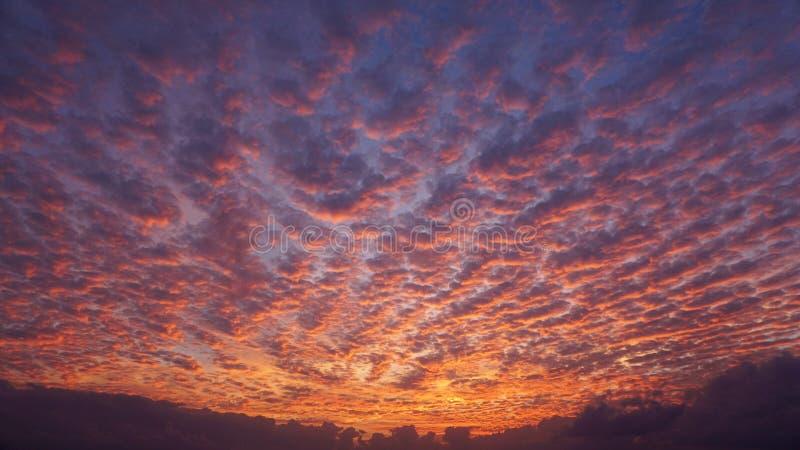 Piękni niebo kolory i widoku na ocean tło Niebo przy magicznym godziny tłem kolorowe t?a niebo Odbitkowa przestrze? dla teksta lu obrazy stock
