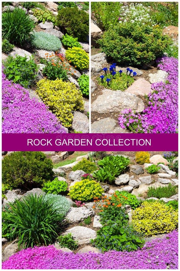 Piękni ogródy z kwiatami. fotografia royalty free