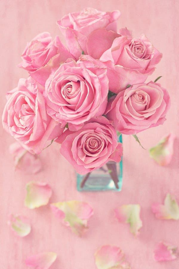 Piękni różowi róża kwiaty fotografia stock