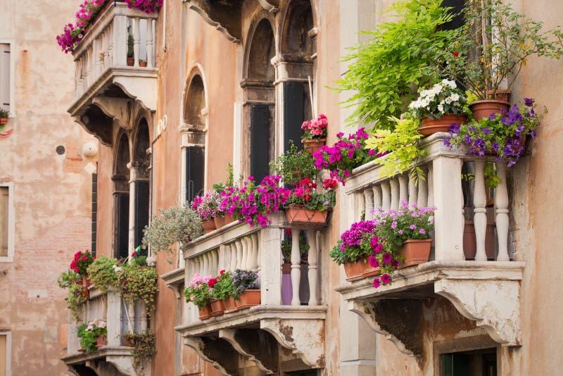 Piękni starzy budynków balkony z kolorowymi kwiatami obrazy royalty free