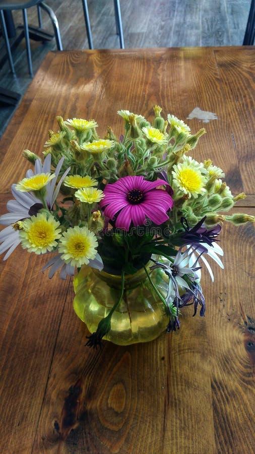 Piękni wiosna kwiaty fotografia royalty free