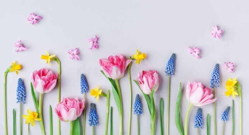 Piękni wiosna kwiaty na pastelu stołu tle Kartka Z Pozdrowieniami dla Międzynarodowego kobieta dnia skład twórczej Mieszkanie nie obrazy stock