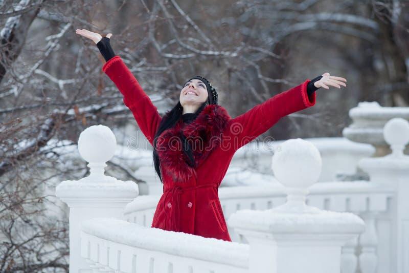 piękni zima kobiety potomstwa fotografia stock