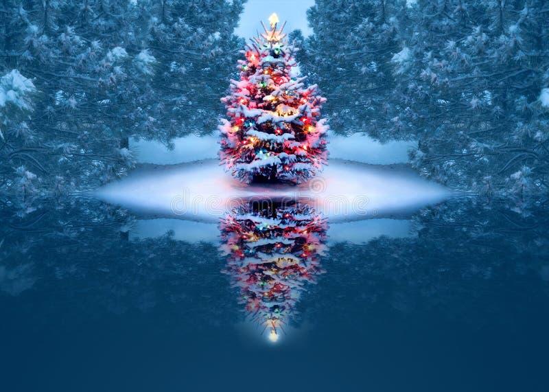 Pięknie Dekorująca choinka Odbija Magicznie W Zamarzniętym jeziorze royalty ilustracja