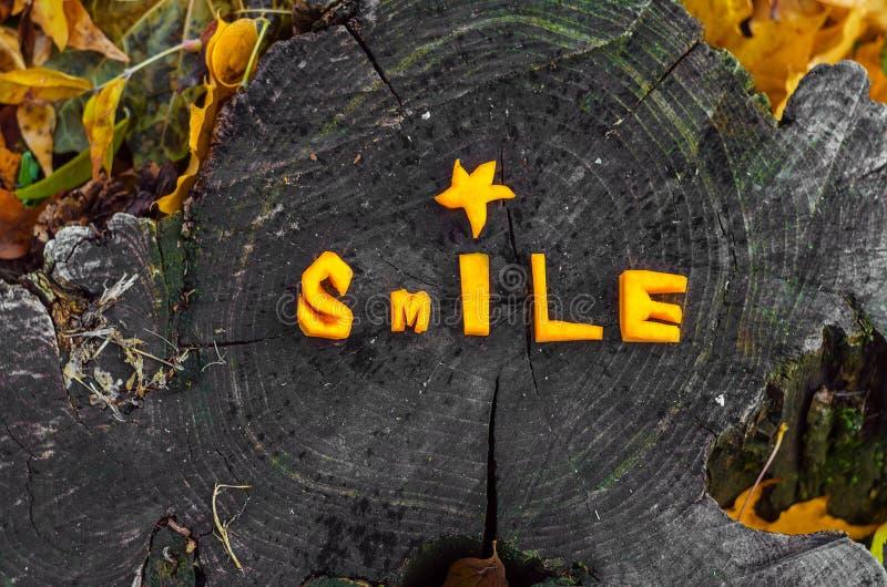 Pięknie kłaść out słowo bania, jesień uśmiech zdjęcie stock