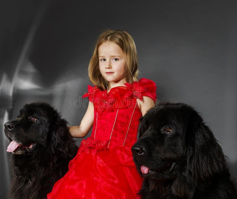 Piękno i bestii dziewczyna z dużym czarnym psem fotografia stock