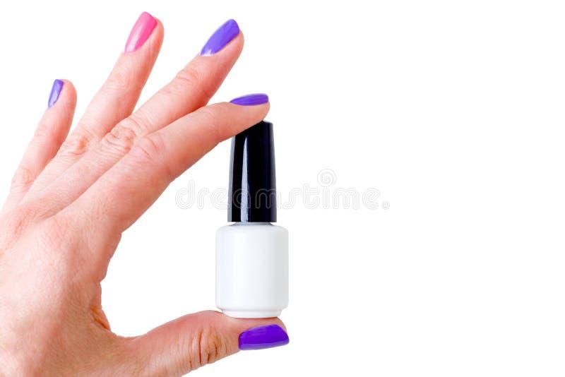 Piękno, moda I gwóźdź sztuki pojęcie, Kobiety ręka z kolorowymi manicure menchiami, purpurami i barwi zakończenie z białą butelką zdjęcie stock
