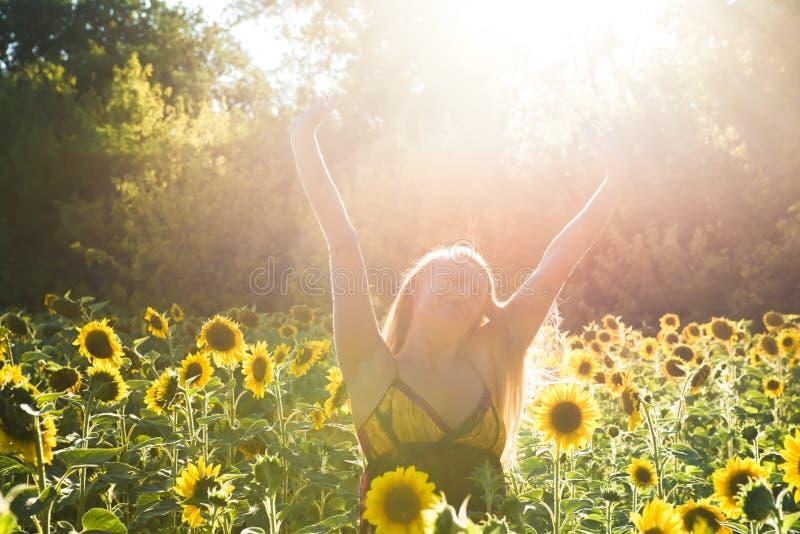 Piękno nasłoneczniona kobieta na żółtej słonecznika pola wolności i szczęścia pojęciu zdjęcie royalty free